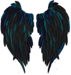 Blue Highlighted Wings