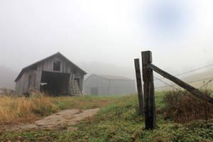 Fields of Fog 03 by Thy-Darkest-Hour