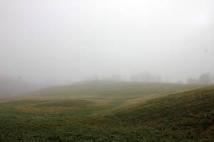 Fields of Fog 01 by Thy-Darkest-Hour