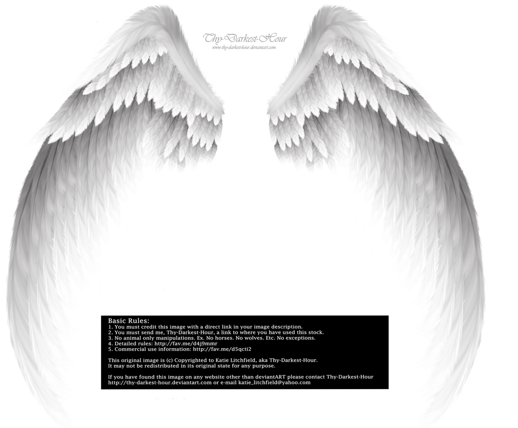 Arch Angel Wings - Silver-White