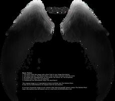 Arch Angel Wings - Silver-Black by Thy-Darkest-Hour