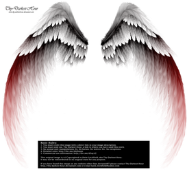 Arch Angel Wings - Red Tinge