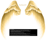 Arch Angel Wings - Golden