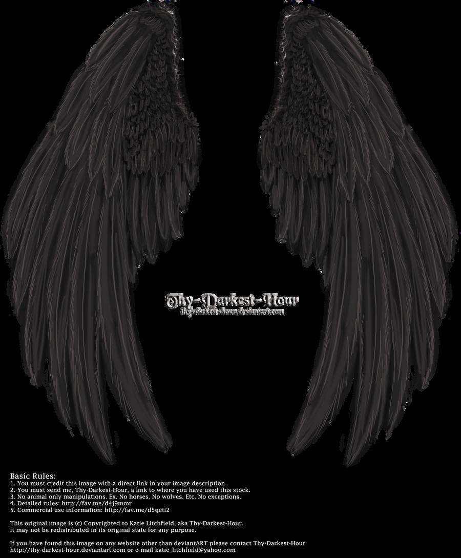 Winged Fantasy V2.2 - Black
