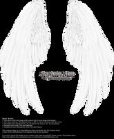 Winged Fantasy V2.2 - White (Free) by Thy-Darkest-Hour