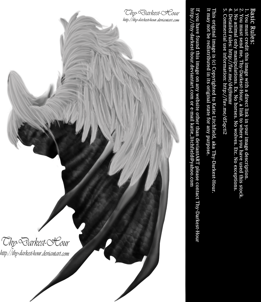 Feathered Demon Wings 01 By Thy Darkest Hour On DeviantArt