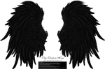 Frill and Fluff Wings - Black