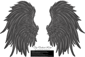 Frill and Fluff Wings - Gray