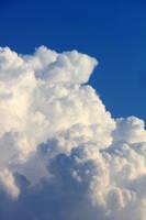 Fluffy Cloud 2014 by Thy-Darkest-Hour
