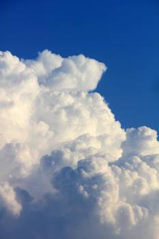 Fluffy Cloud 2014