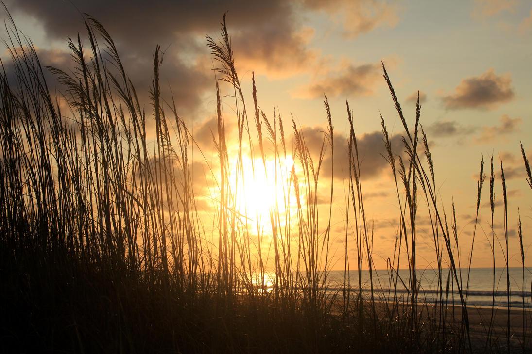 Atlantic Dunes Sunrise 01 by Thy-Darkest-Hour