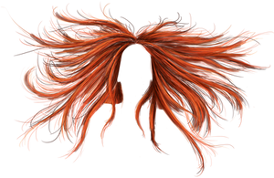 Phoenix Hair - PNG