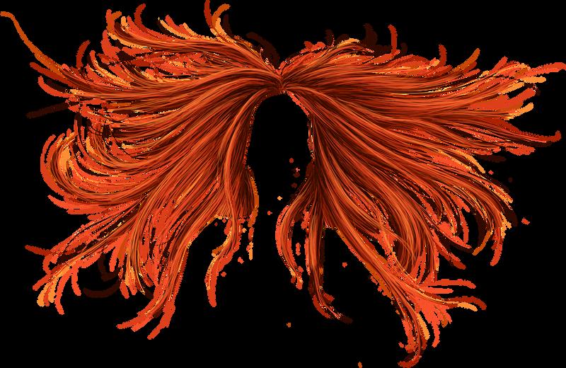 Phoenix Hair - PNG by Thy-Darkest-Hour