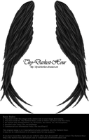 Winged Magic - Black by Thy-Darkest-Hour