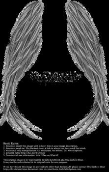 Winged Magic - Silver