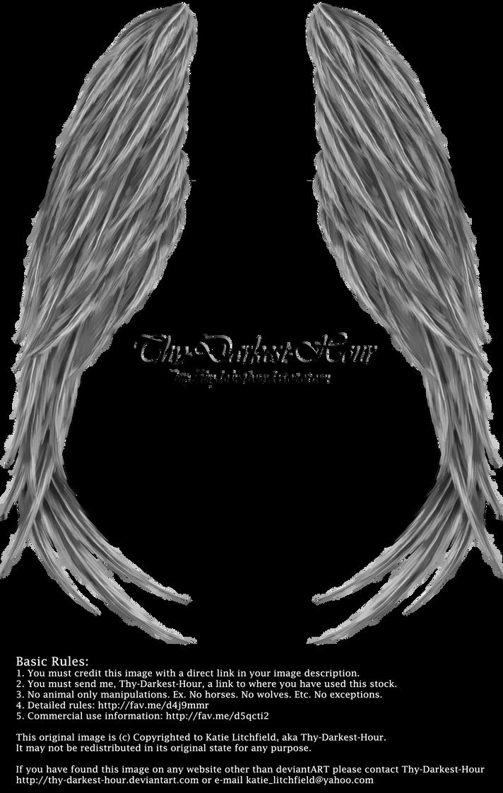 Winged Magic - Silver by Thy-Darkest-Hour