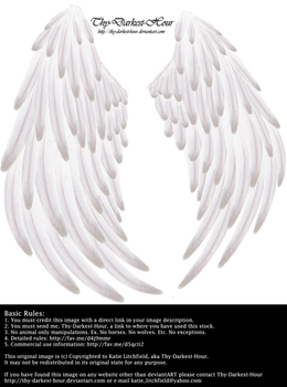 Solace Wings - White