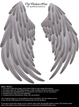 Solace Wings - Silver