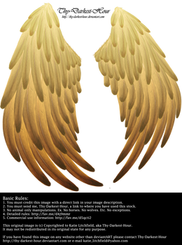 Solace Wings - Golden