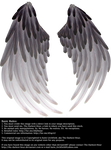 Solace Wings - Black to Silver