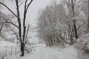 Snow - March 2015 - 01 by Thy-Darkest-Hour