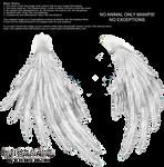 Enchantress Wings - White