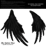 Enchantress Wings -Black