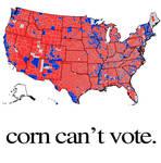 corn cant vote