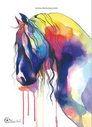 Horse colorlife
