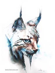 Lynx - Watercolor