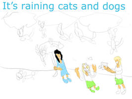 Raining cats and dogs  by thecatthatcandraw