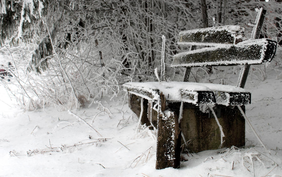Frozen Bench by jessyhorse