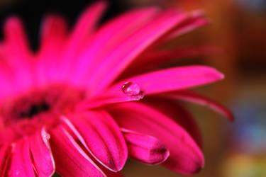 Teardrops on your skin by jessyhorse