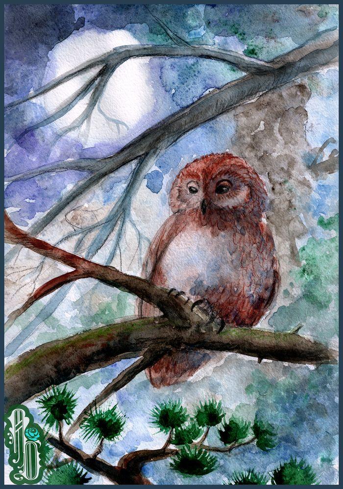 Night Owl by AlbinaDiamond