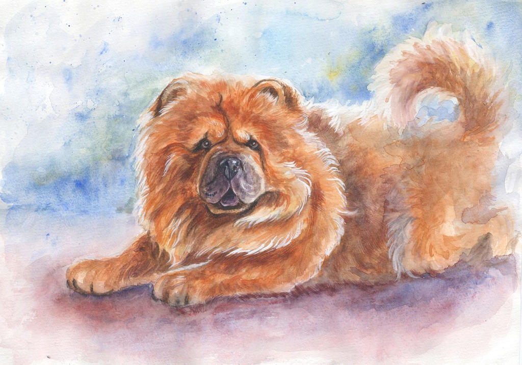 Chow Chow in watercolor by AlbinaDiamond