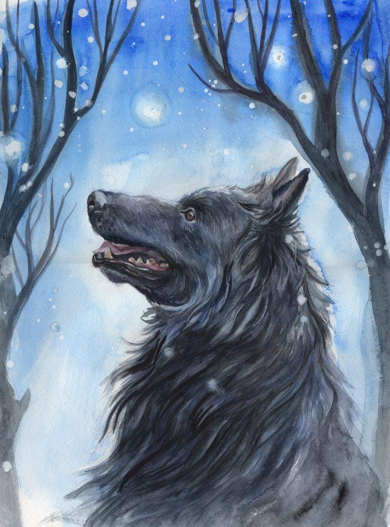 First snow by AlbinaDiamond
