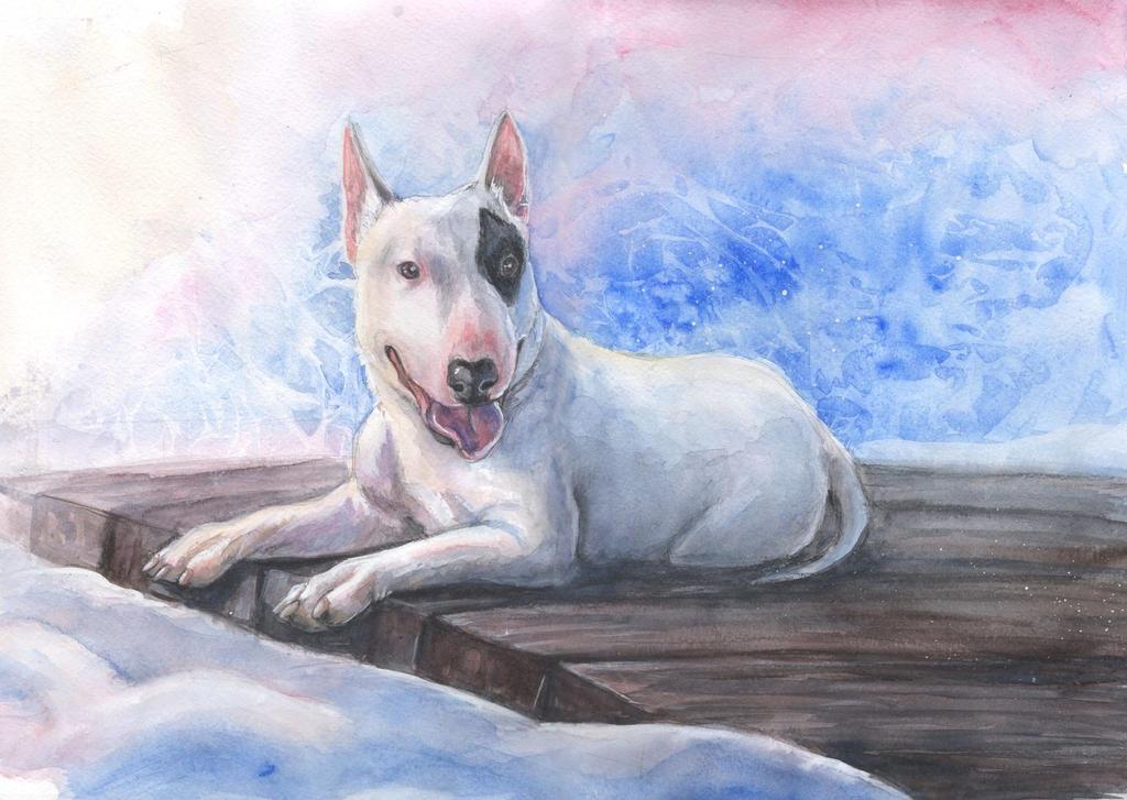 Bull terrier winter by AlbinaDiamond