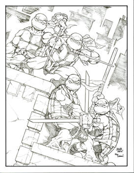 TMNT Cover Remake