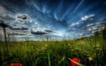 Majestic Skies - Part IV