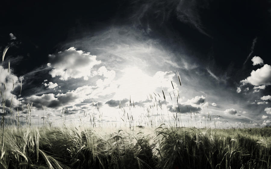 Majestic Skies - Part V by myINQI