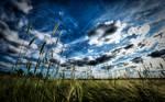 Majestic Skies - Part VI