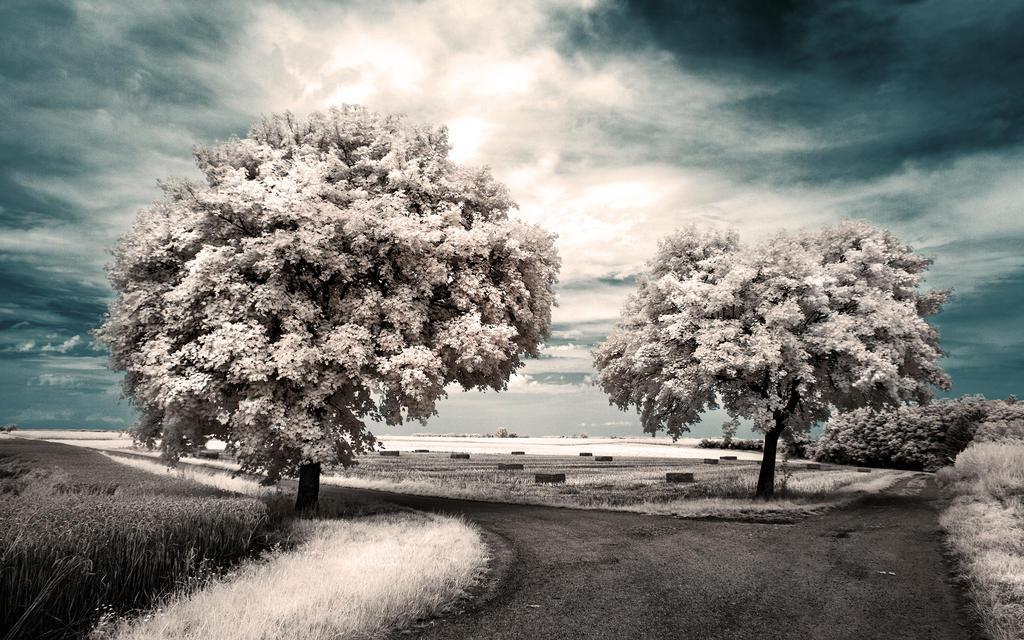 Crossroads II by myINQI