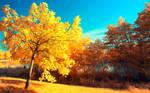 Yellow Trees Part V