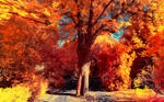 The colors of Autumn - Part III