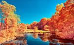 The colors of Autumn - Part V