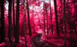 Infrared Trees - pt. VII