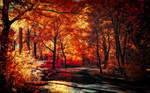 The colors of Autumn - Part VIII