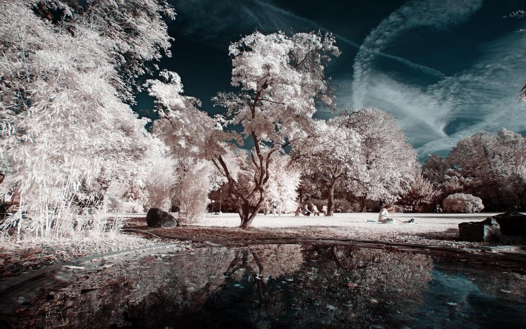 Tag im Park II by myINQI