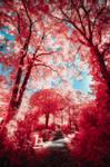 Infrared Landscapes MMXV - Pt. II