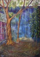backyard tree by tamino